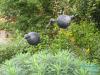 vogels op stalen pinnen